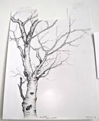 saturday morning sketch u2013 birch tree u2013 made by the brooke