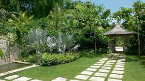 distinctive tropical front yard landscape design u2014 home ideas