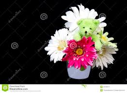 teddy bear flowers stock photos royalty free pictures
