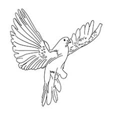 bird coloring pages for toddlers top 20 free printable bird coloring pages online