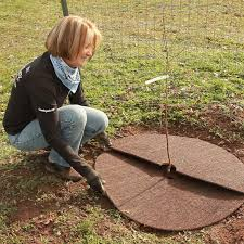 coco fiber mat 24 diameter