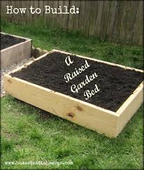 Backyard Raised Garden Ideas by Building A Raised Garden Bed Gardening Ideas