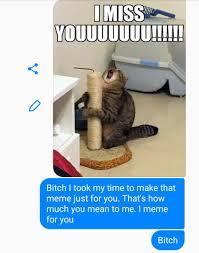 My Best Friend Meme - best 30 best friend fun on 9gag