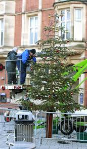 at last town gets a 30ft christmas tree after original flopped