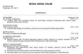 Creating A Professional Resume Classy Idea Professional Looking Resume 11 The Best Cv Resume