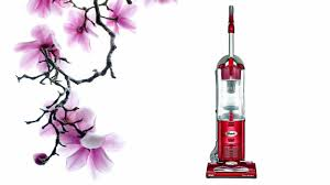 Shark Vacuum Pictures by Watch This Before Buying Shark Navigator Swivel Vacuum Nv26