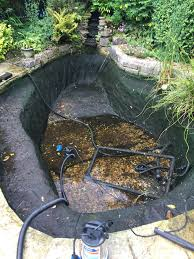 uk native pond plants pond cleaning dorsets best pond cleaning service from pond stars uk