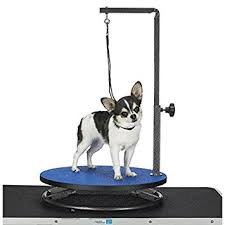dog hair cutting table amazon com master equipment small pet grooming table blue pet