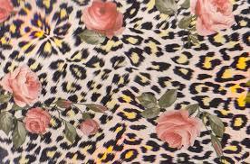 cheetah print and pink rsoes by littlemissnoitall on deviantart