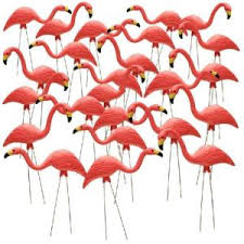 southern patio 26 in pink flamingo 10 pack hdr 499485 the