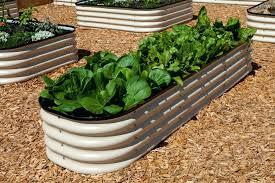 raised garden beds for sale garden garden beds beautiful corrugated iron raised garden beds