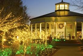 where to find christmas light displays in charlotte