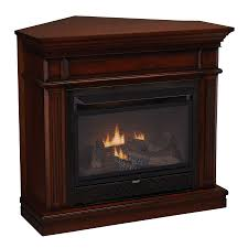 shop cedar ridge hearth 42 in dual burner vent free auburn corner