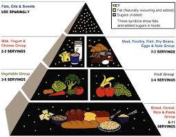 thanksgiving food pyramid 2