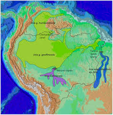 Amazon World Map by File Cetacea Range Map Amazon River Dolphin Png Wikimedia Commons