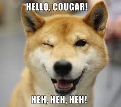 Doge Meme Christmas - i has a hotdog shiba inu funny dog pictures dog memes puppy