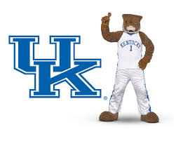 kentucky wildcats mascot wildcat wallpapers put the cats on