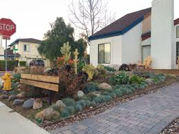 Drought Tolerant Backyard Ideas Patio U0026 Outdoor Amazing Drought Tolerant Landscaping With Paver