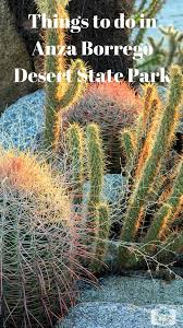 things to do in every state 7 things to do in anza borrego desert state park misadventures