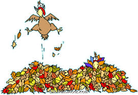 turkey jumping in leaf pile thanksgiving animation gif animations