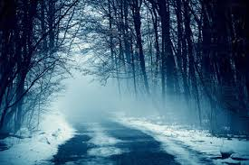 blue morning wallpapers foggy blue morning winter u0026 nature background wallpapers on