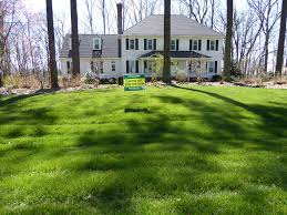 february 2017 lawn of the month winners virginia green lawn care