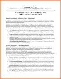 senior executive resume senior executive resume examples best 25