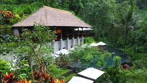 峇里島 烏布maya ubud resort u0026 spa 河谷中的spa 一口冒險bitesized