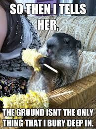 Groundhog Meme - it s groundhog day again 20 pictures worldwideinterweb