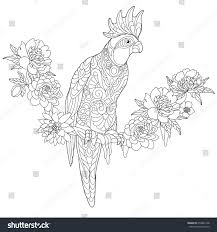 coloring page cockatoo parrot sitting on stock vector 650862148
