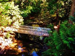 Leach Botanical Garden The Bridge The Creek In Leach Botanical Garden Picture Of