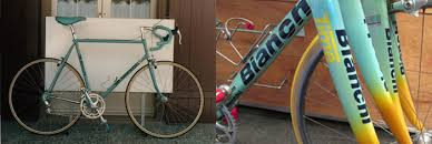 when the new dog digs up the old dog part 4 u2014 velo aficionado