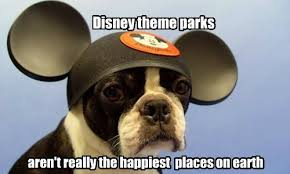 Frowning Dog Meme - no he s smiling i think i has a hotdog dog pictures funny