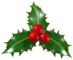 christmas mistletoe christmas mistletoe png clip image gallery