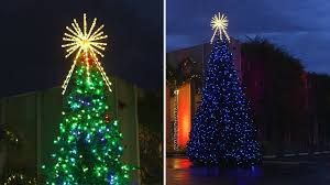 rgb animated majestic mountain pine commercial tree