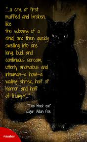 Cool Halloween Poems by Best 20 Black Cat Quotes Ideas On Pinterest U2014no Signup Required