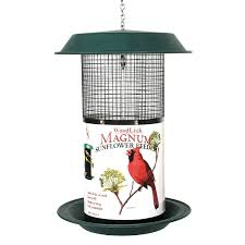 amazon com woodlink mag1 magnum sunflower screen feeder pet