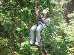 Treetop Canopy Tours by What To Do In Santa Teresa Enchanting Costa Rica