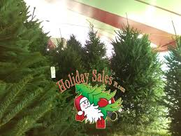 christmas excelent mooresstmas tree farm picture ideas the loft
