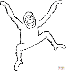 orangutan coloring page free printable coloring pages