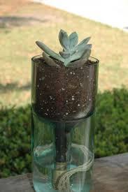 Self Watering Patio Planters by Best 25 Self Watering Bottle Ideas On Pinterest Self Watering