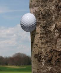 why d i do that hitting around a tree golf digest