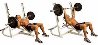 Incline Bench Muscle Group Chest Workouts And Exercises To Help You Build Muscle Mass