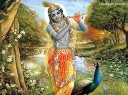 hindu l the many roles of lord krishna by genice phillips l lord krishna l