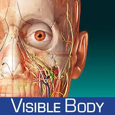 Human Anatomy Atlas Iphone神アプリ Human Anatomy Atlas U2013 3d Anatomical Model Of The