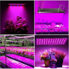 what is the best lighting for growing indoor best grow lights for vegetables our 2021 reviews