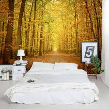 Tree Wall Murals Autumn Forest Path Wall Mural