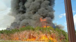 Wildfire Viewer by Brush Fire Wildfires Florida Fire Safety And Information