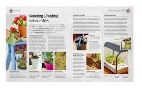 indoor edible garden creative ways to grow herbs fruits and