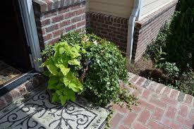 decor you adore easy diy pumpkin topiary tutorial